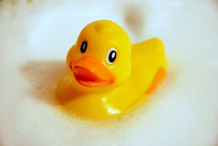 Yellow duck covered from the soap bubbles Stock Photo