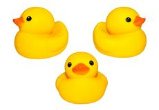 Yellow duck isolated. Cute yellow rubber duck on white colored background Stock Photography