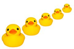 Yellow duck isolated. Cute yellow rubber duck on white colored background Stock Photos