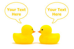 Yellow duck Stock Photography