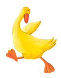 Yellow duck running Royalty Free Stock Photos
