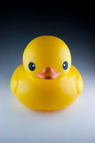 Yellow duck toy. For bath royalty free stock photo