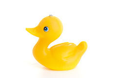 Yellow duck toy Stock Image
