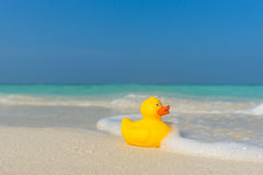 Yellow duck on the tropical beach. Concept travel and vacation Royalty Free Stock Photo