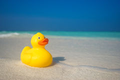 Yellow duck on the tropical beach. Concept travel and vacation Royalty Free Stock Photography