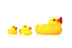 Yellow duck Stock Photo