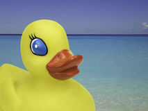 Yellow duck on vacation. Yellow rubber duck on tropical Caribbean beach with blue ocean in the background. Travel concept for kids stock image