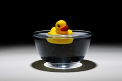 Yellow duck in the water. A toy duck in a bowl of water, affordable summer vacation Royalty Free Stock Image