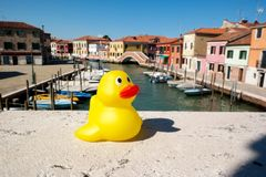 Yellow duckling in Murano. Duckling around the world, world traveller rubber duck Stock Photography