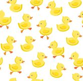 Ducklings, seamless pattern, color, white, vector. Yellow ducklings on a white field. Color, flat vector picture. Funny ducklings stock illustration