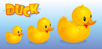 Yellow ducks. On a background of blue water Stock Photo