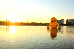 The yellow ducks is the most populars view for photos. Stock Photo