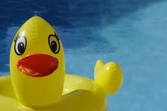 Yellow Ducky Toy. Large yellow ducky pool toy stock images