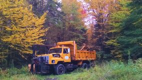 Yellow dumptruck sits idle under autumn leaves stock images