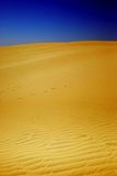 Yellow dune. Landscape of the yellow sand dune and blue sky Royalty Free Stock Images