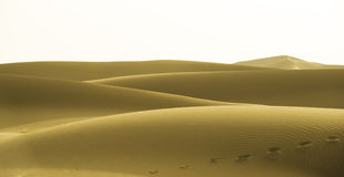Yellow dunes Stock Images