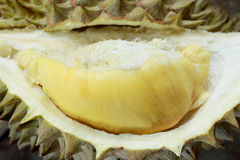 Yellow Durian Stock Image