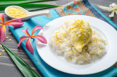 Yellow durian with sweet sticky rice and coconut milk. Thai dess Royalty Free Stock Photography