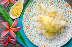 Yellow durian with sweet sticky rice and coconut milk. Thai dess Stock Images