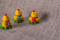 Easter baby chicken on texture background royalty free stock images