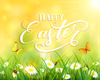 Yellow Easter background with grass and flowers. Yellow nature Easter background with a butterfly flying above the grass and flowers, lettering Happy Easter and Royalty Free Stock Photos