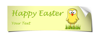 Yellow easter banner curled chicken Stock Images