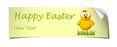 Yellow easter banner curled. Easter yellow banner with curled corner and chicken and grass Stock Image
