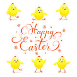 Yellow Easter chicks on white background Stock Photos