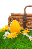 Easter egg and basket Stock Photography