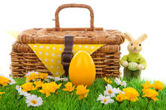 Easter egg and basket Royalty Free Stock Photos