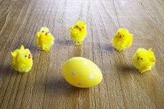 Yellow easter egg and chickens Stock Photos