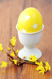 Yellow easter egg in a egg cup with Forsythia twig Royalty Free Stock Images