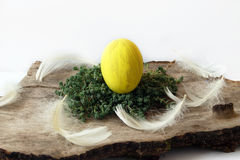 Yellow Easter egg and feathers Stock Photo