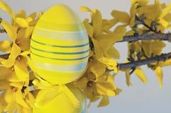 Yellow Easter egg Stock Photos