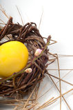 Yellow Easter egg in a wicker wreath. And with a branch of a blossoming peach royalty free stock photo