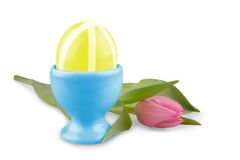 Yellow Easter eggs with pink tulip, isolated Royalty Free Stock Photo
