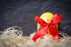Yellow easter eggs with red ribbon bow in nest on dark background. Yellow easter eggs with red ribbon bow in the nest on dark background royalty free stock images