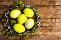 Yellow Easter eggs and spring blossom flowers. Top view nest organic bloom bright cherry celebration tree craft still life festive april decorative season food stock images