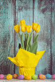 Yellow Easter Tulips Royalty Free Stock Photography