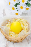 Yellow egg in the basket in a wicker basket and daisies Stock Photos