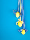 Yellow eggs Royalty Free Stock Photo