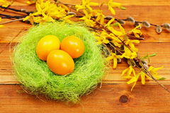 Yellow eggs in nest Stock Image