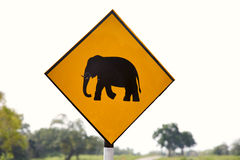 Yellow Elephant wanring sign on the road Royalty Free Stock Photos