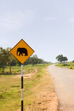 Yellow Elephant wanring sign on the road Royalty Free Stock Photography