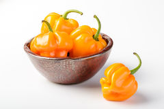 Yellow emperor pepper Stock Image