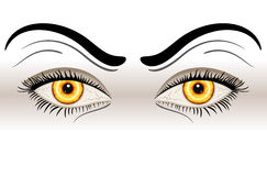 Yellow Evil Eyes. Over white background. Vector file saved as EPS AI8, all elements layered and grouped, no effects Royalty Free Stock Images