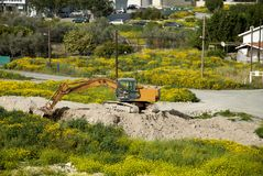 Excavator on a field. Yellow excavator working in a field full of yellow flowers in a residential neighborhood of Cyprus Royalty Free Stock Photography