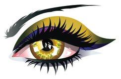 Free Yellow Eye Stock Image - 52556491