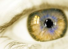 Yellow eye. Woman eye Royalty Free Stock Photography
