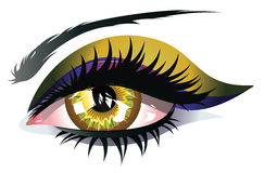 Yellow Eye. Female eye of yellow color with long lashes and eyeshadow Stock Image